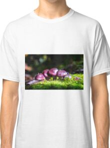 The Fairy Village Classic T-Shirt