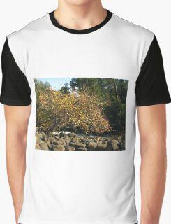 Autumn in Tasmania - Launceston Cataract Gorge Graphic T-Shirt