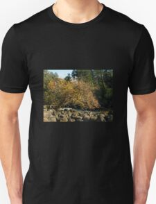 Autumn in Tasmania - Launceston Cataract Gorge Unisex T-Shirt