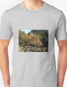 Autumn in Tasmania - Launceston Cataract Gorge Unisex T-Shirt