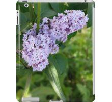 lilac curtain iPad Case/Skin