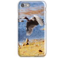 Flying Blue Heron At Brazos Bend State Park Texas Wetland iPhone Case/Skin