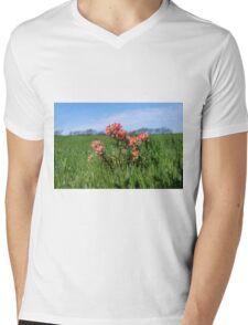 Beautiful Indian Paintbrush flowers closeup Mens V-Neck T-Shirt