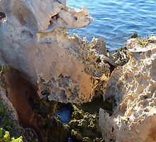 Shapes of the Rocks by kalaryder