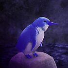 Little Blue Penguin by Mark Elton