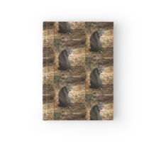 Bobcat Comes Visiting Hardcover Journal