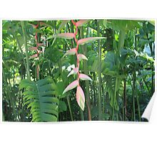 Beautiful Tropical Greenery Poster