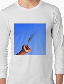 Wheat in hand in blue sky Long Sleeve T-Shirt