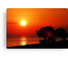 Dawn in the South first series Canvas Print