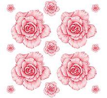 Roses Photographic Print
