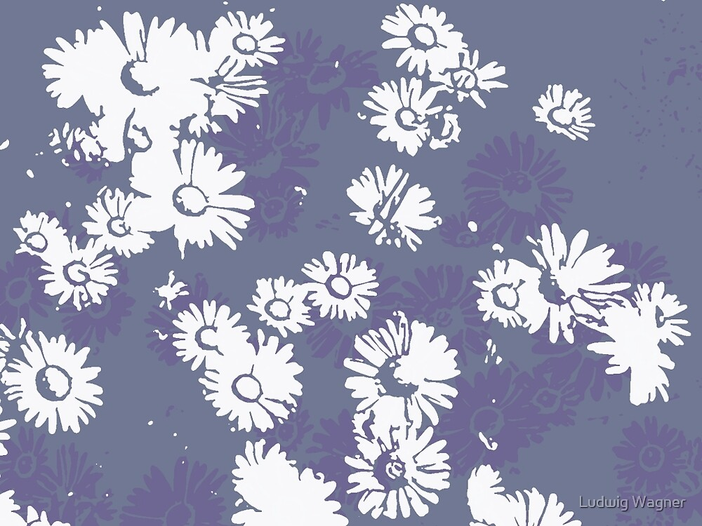 Daisies (white & purple) by Ludwig Wagner