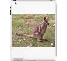 Kangaroo -  Yellow Footed Rock Wallaby iPad Case/Skin