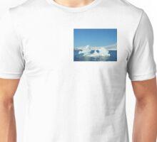 Antarctic Sea Dragon Unisex T-Shirt