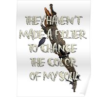 They Haven't  Made A Filter  To Change  The Color  Of My Soul Poster