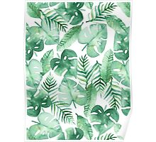 Tropical Jungle on White Poster
