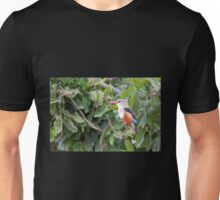 Grey-Headed Kingfisher (Halcyon leucocephala) Unisex T-Shirt