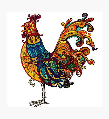 Fancy rooster Photographic Print