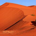 Big Red - Perry Sand Dunes by Hans Kawitzki