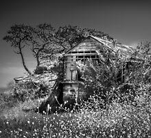 Port Arlington House by Christine  Wilson Photography