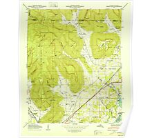 USGS TOPO Map Alabama AL Doran Cove 303697 1950 24000 Poster