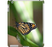 Monarch Butterfly iPad Case/Skin