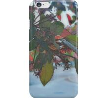 Through The Leaves (Painted) iPhone Case/Skin
