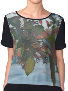 Through The Leaves (Painted) Chiffon Top