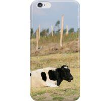 Holstein Cow Chewing iPhone Case/Skin