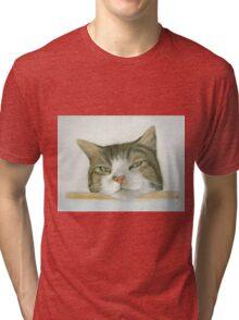 Look out spot Tri-blend T-Shirt