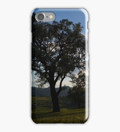 trees in s iPhone Case/Skin