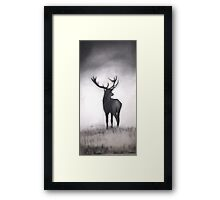 """Stag silhouette""Fine Art by LaneyArt Framed Print"