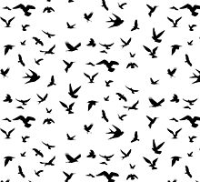 Bird Silhouettes by Andrew Alcock