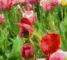 Tulip Garden Sticker
