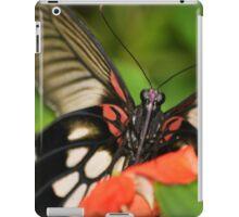 Cheeky butterfly iPad Case/Skin