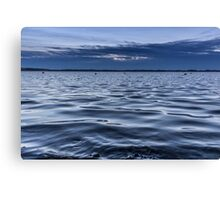Water water everywhere Canvas Print