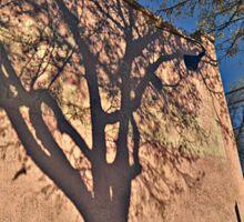 Shadow Of A Tree Sticker