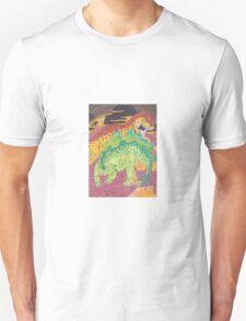 Allosaurus vs Stegosaurus T-Shirt