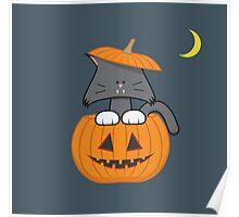 Pumpkin Cat Poster