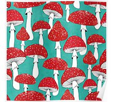 Red mushrooms on turquoise blue Poster