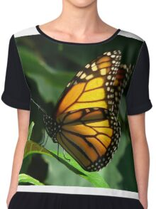 Monarch Butterfly Chiffon Top