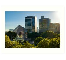 Hyde Park (Sydney): Sunrise Art Print
