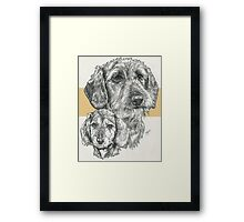 Dachshund, wire-haired, Father & Son Framed Print