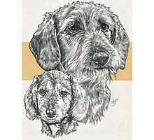 Dachshund, wire-haired, Father & Son Photographic Print