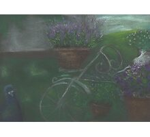 Bicycle with flowers and pigeon Photographic Print