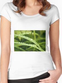 Raindrops on Dune Grass Women's Fitted Scoop T-Shirt