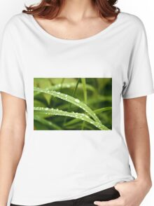 Raindrops on Dune Grass Women's Relaxed Fit T-Shirt