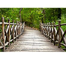 FOREST BRIDGE IN THE WOODS  Photographic Print