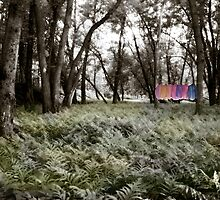 Shirts in a Floodplain Forest by Wayne King