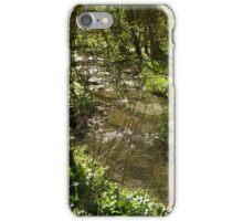Woodland stream iPhone Case/Skin