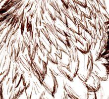 Bearded Vulture Portrait Sticker
